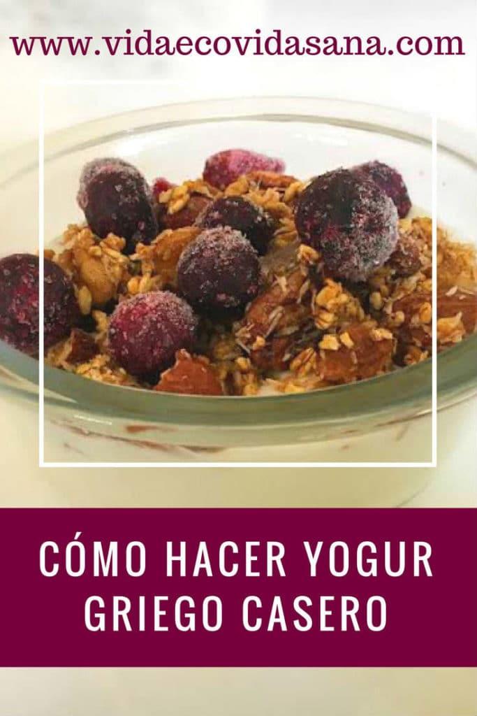 yogur-griego-casero-pinterest