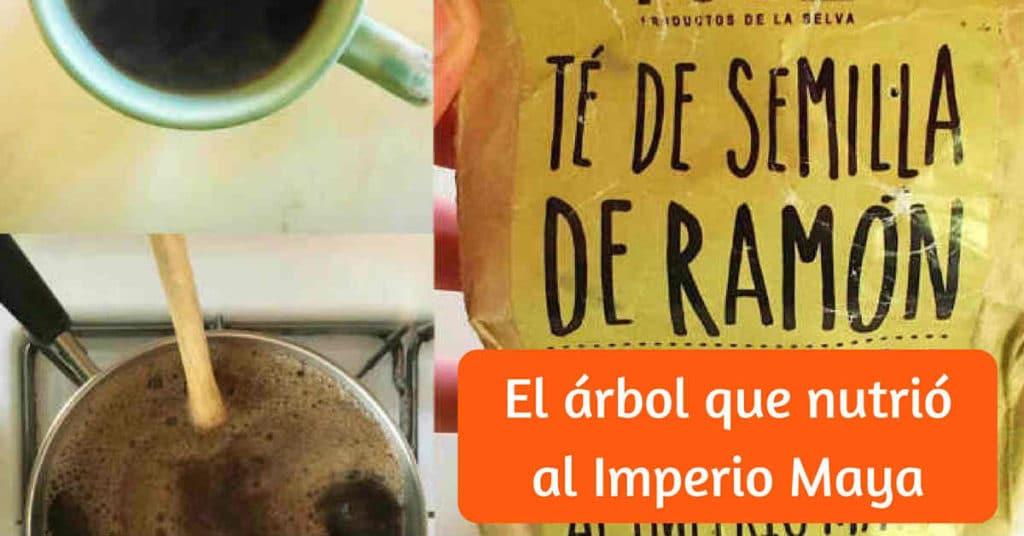 arbol-nutrio-imperio-maya-facebook