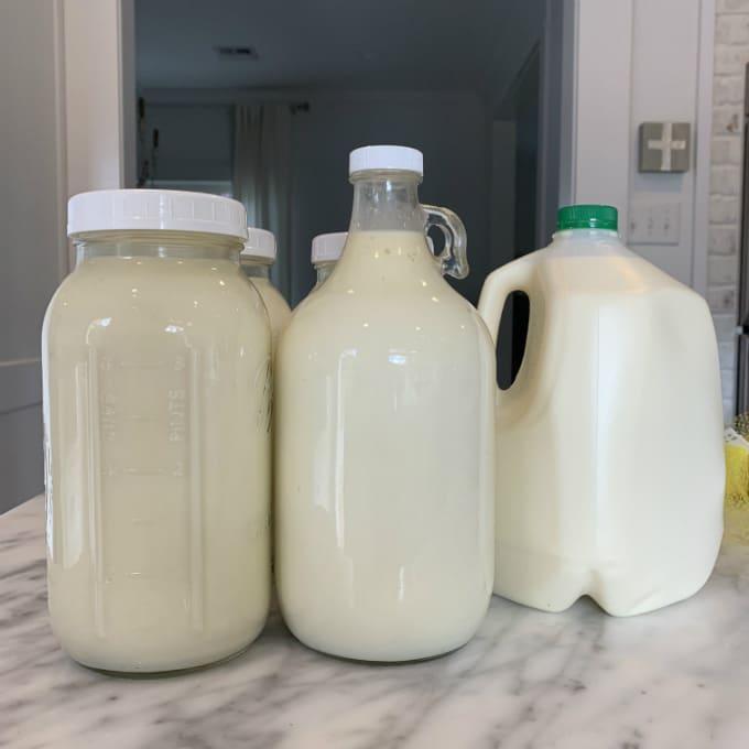 leche cruda leche bronca kefir