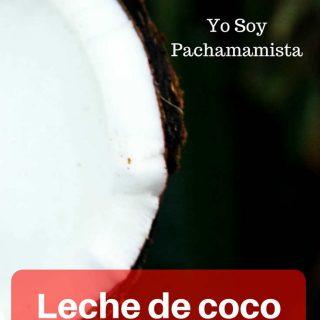 Leche de coco casera (rico y rápido) CON video