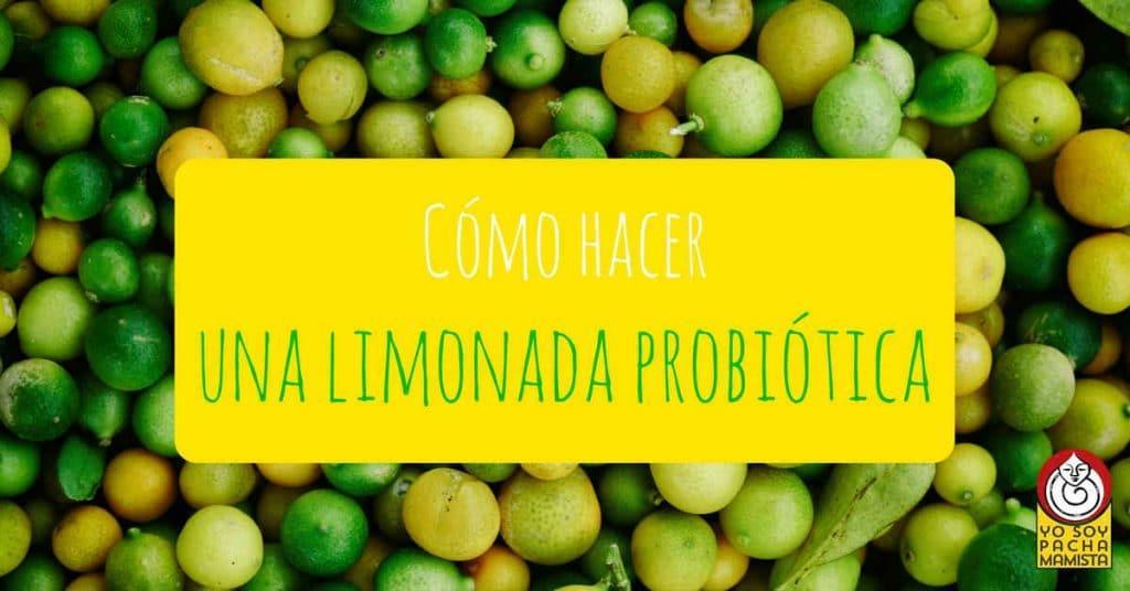 como-hacer-limonada-probiotica-facebook