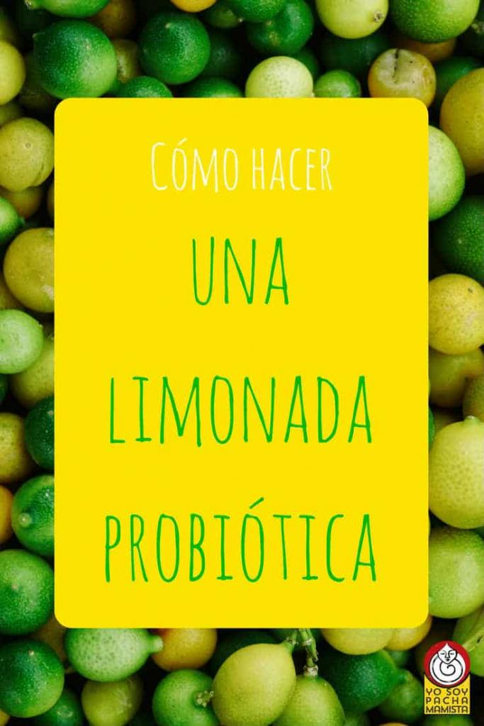 como-hacer-limonada-probiotica-pinterest