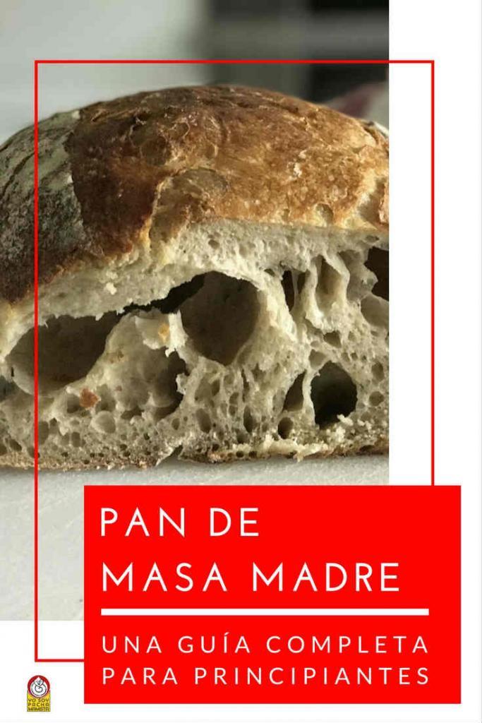 pan-masa-madre-guia-completa-para-principiantes-pinterest