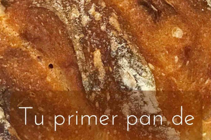 tu-primer-pan-de-masa-madre-paso-a-paso-pinterest