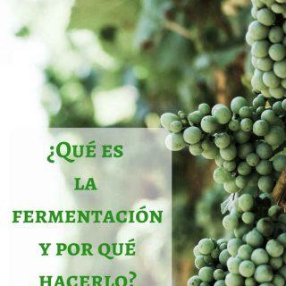 La fermentación: ¿qué es y por qué hacerlo?