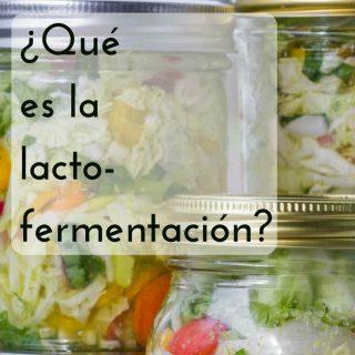 ¿Qué es la lacto-fermentación?
