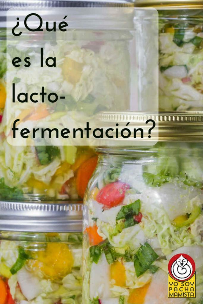 que-es-la-lacto-fermentacion-pinterest