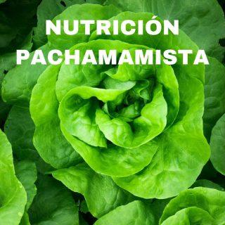 nutricion-pachamamista-pinterest