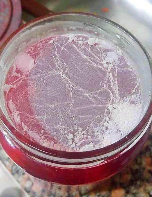 kham-yeast-levadura-fermentos-vegetales