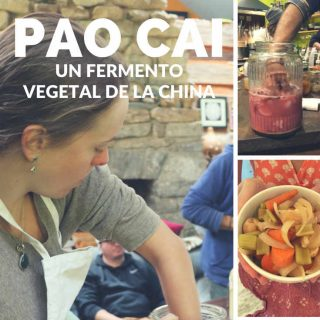 como-hacer-pao-cai-fermento-vegetal-china-pinterest