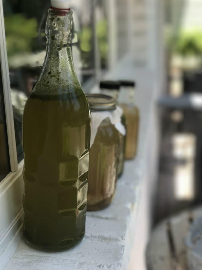 kombucha-coca-jengibre-segunda-fermentacion