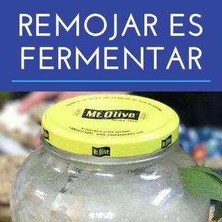 remojar-es-fermentar-pinterest