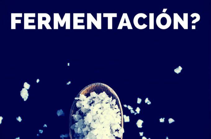 Cual-es-el-rol-de-la-sal-en-la-fermentacion-pinterest