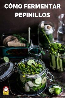como-fermentar-pepinillos-pinterest