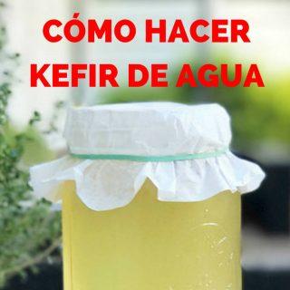 Cómo hacer KEFIR DE AGUA (CON VIDEO)