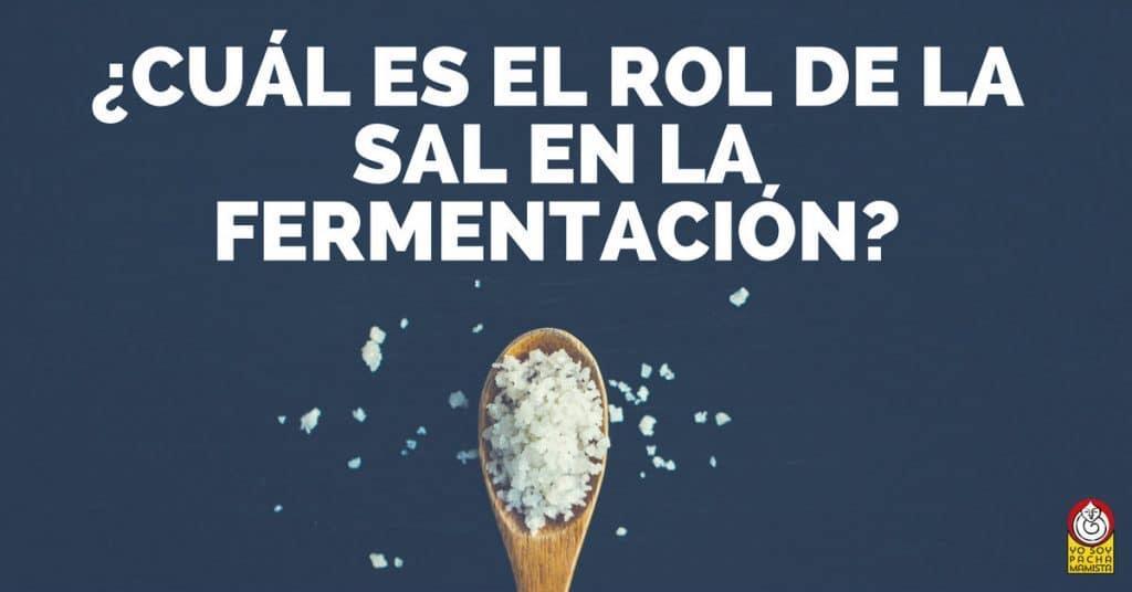 cual-es-el-rol-de-la-sal-en-la-fermentacion-facebook