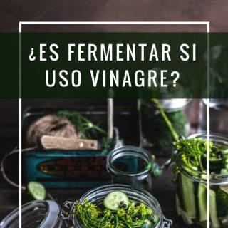 es-fermentar-si-uso-vinagre-pinterest