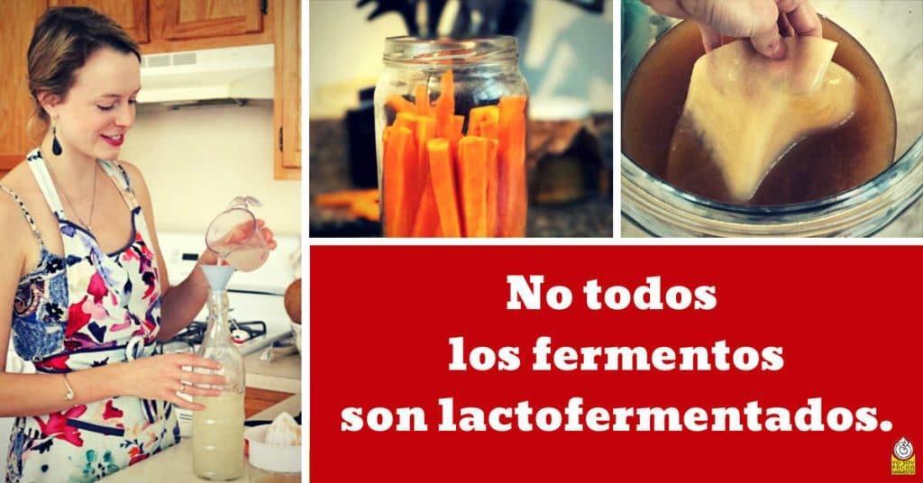 no-todos-los-fermentos-son-lactofermentados-facebook