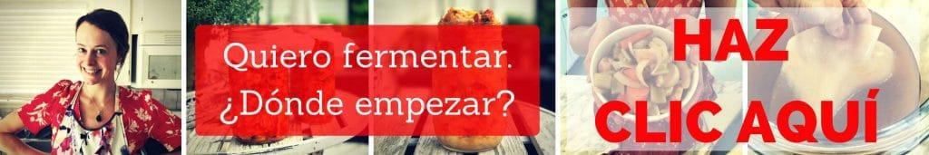 quiero-fermentar-donde-empezar-haz-clic-aqui-yo-soy-fermentista