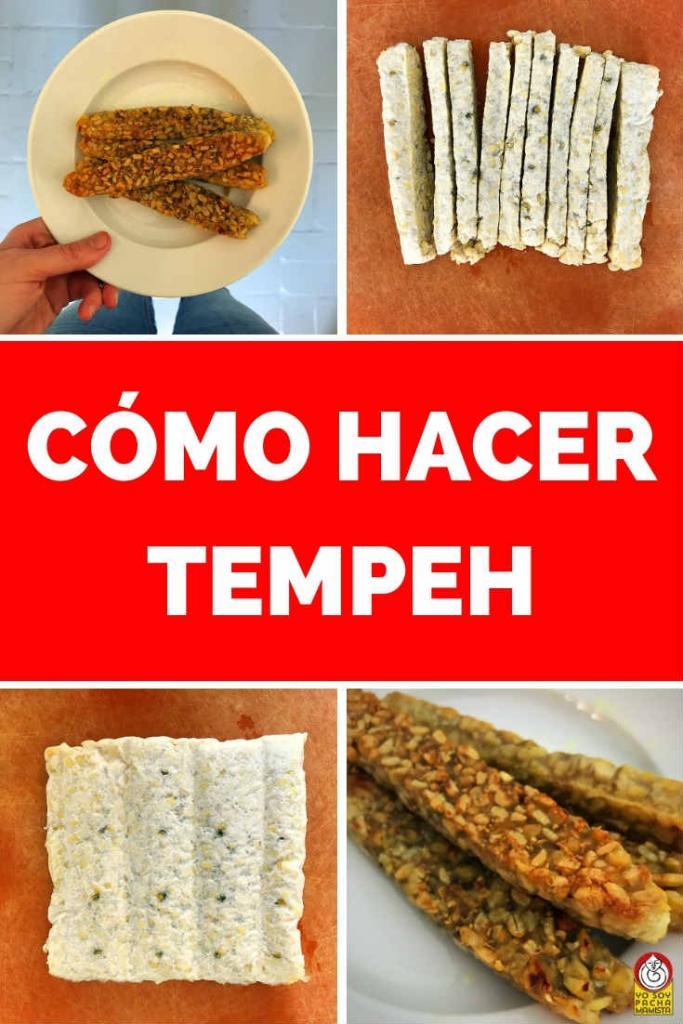 como-hacer-tempeh-pinterest