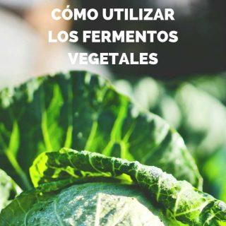 como-usar-chucrut-fermnetos-vegetales-pinterest