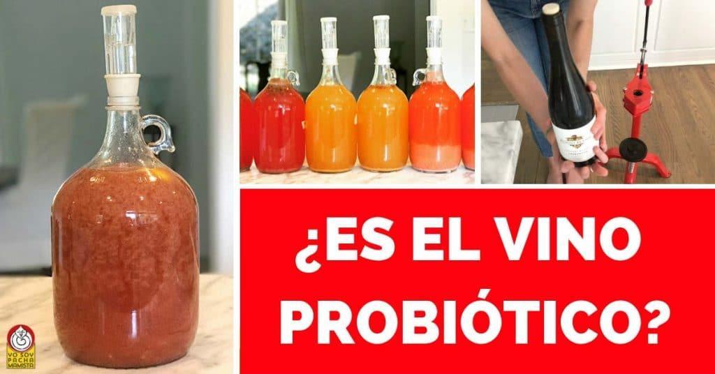 es-el-vino-probiotico-facebook