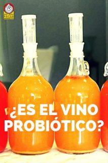 es-el-vino-probiotico-pinterest