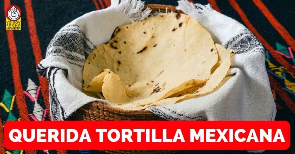 querida-tortilla-mexicana-oda-poema