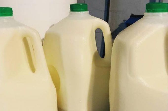 guia completa leche lacteos pinterest
