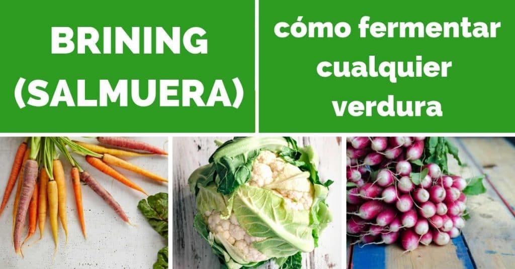 brining salmuera fermentar verduras