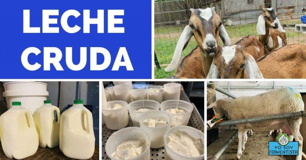 leche cruda post facebook