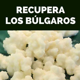 Recuperando búlgaros (kefir de leche)