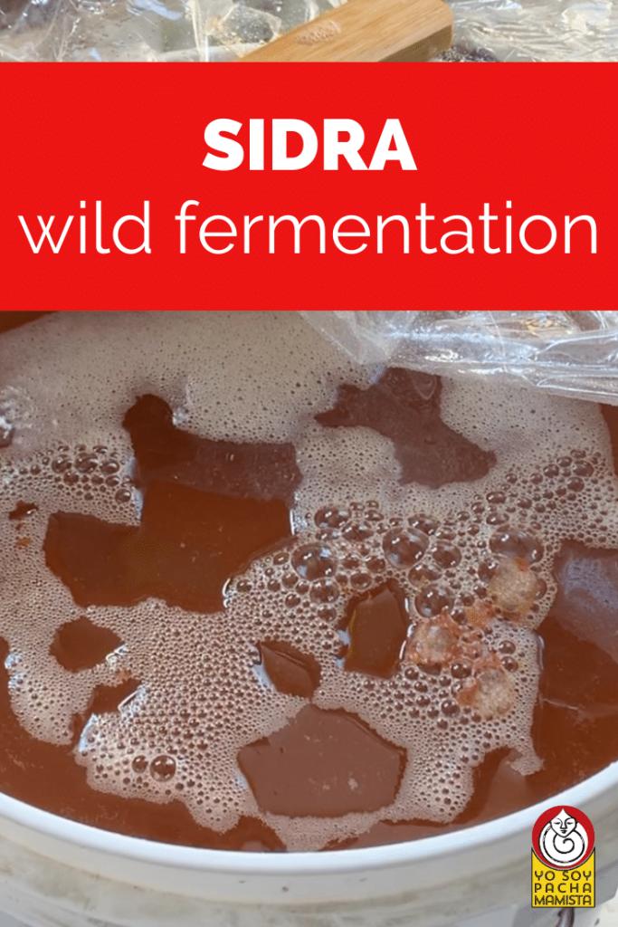 sidra wild fermentation ben watson pinterest